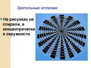На рисунках не спирали, а концентрические окружности Зрительные иллюзии