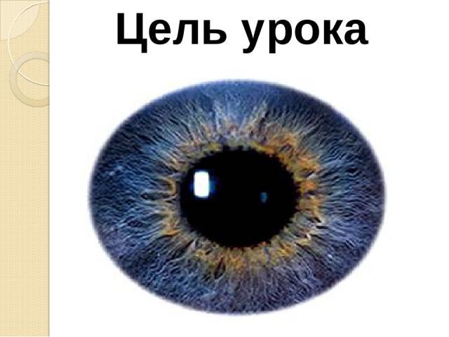 Цель урока Повторить и обобщить знания по теме «Линзы». Изучить строение и функции глаза, рассмотреть работу глаза как оптической системы, изучить оптические иллюзии; объяснить дефекты зрения и возможную профилактику и коррекцию этих дефектов; стави…
