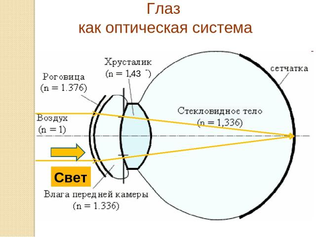 Глаз как оптическая система ,43 Свет