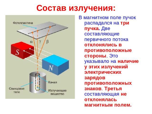 Состав излучения: В магнитном поле пучок распадался на три пучка. Две составляющие первичного потока отклонялись в противоположные стороны. Это указывало на наличие у этих излучений электрических зарядов противоположных знаков. Третья составляющая н…