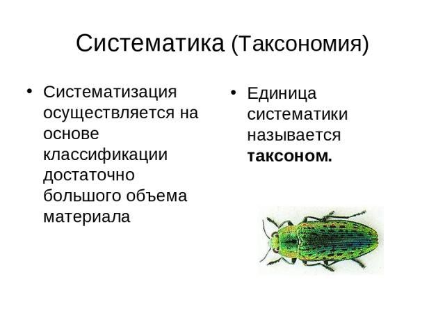 Систематика (Таксономия) Систематизация осуществляется на основе классификации достаточно большого объема материала Единица систематики называется таксоном.