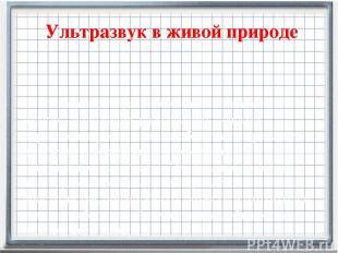 Ультразвук в живой природе Эхолокация (от греч. еcho –отголосок и от лат. locati