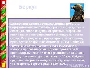 Беркут Вычисли размах крыльев беркута, если он превышает размах крыльев аиста на