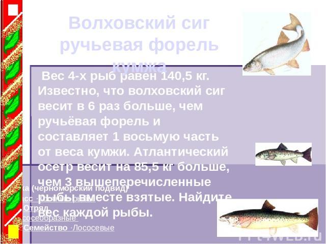 Класс ·Костные рыбы Отряд ·Лососеобразные Семейство ·Лососевые Кумжа (черноморский подвид) Вес 4-х рыб равен 140,5 кг. Известно, что волховский сиг весит в 6 раз больше, чем ручьёвая форель и составляет 1 восьмую часть от веса кумжи. Атлантический о…