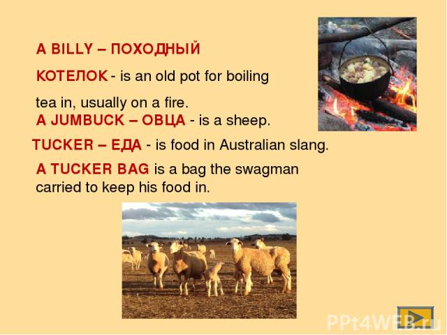 A BILLY – ПОХОДНЫЙ КОТЕЛОК - is an old pot for boiling tea in, usually on a fire. A JUMBUCK – ОВЦА - is a sheep. TUCKER – ЕДА - is food in Australian slang. A TUCKER BAG is a bag the swagman carried to keep his food in.