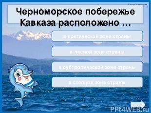 Черноморское побережье Кавказа расположено … в арктической зоне страны в лесной