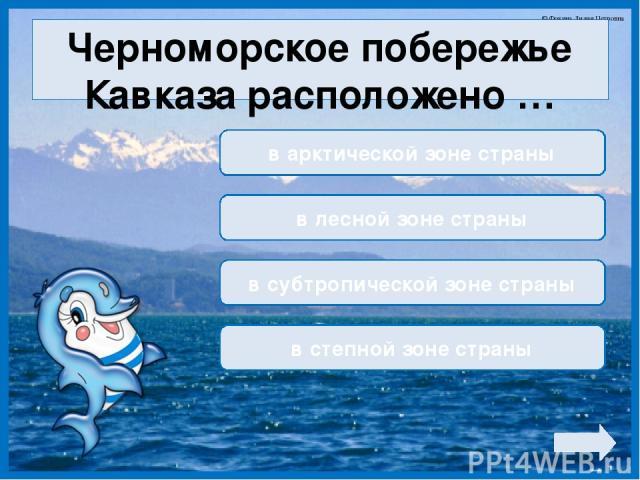 Черноморское побережье Кавказа расположено … в арктической зоне страны в лесной зоне страны в субтропической зоне страны в степной зоне страны © Фокина Лидия Петровна