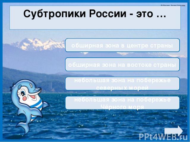 Субтропики России - это … обширная зона в центре страны обширная зона на востоке страны небольшая зона на побережье северных морей небольшая зона на побережье Чёрного моря © Фокина Лидия Петровна
