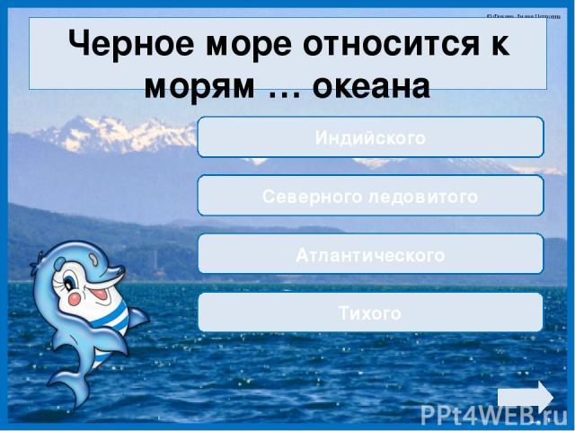 Черное море относится к морям … океана Индийского Северного ледовитого Атлантического Тихого © Фокина Лидия Петровна
