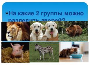 На какие 2 группы можно разделить зверей?