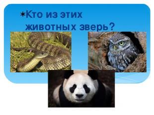 Кто из этих животных зверь?