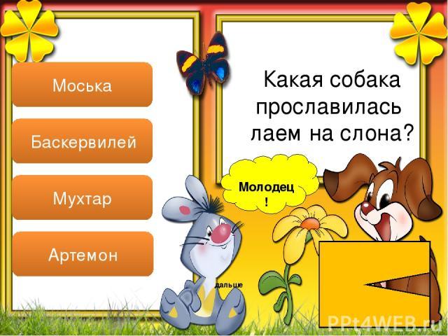 Молодец! дальше Моська Баскервилей Мухтар Артемон Какая собака прославилась лаем на слона?