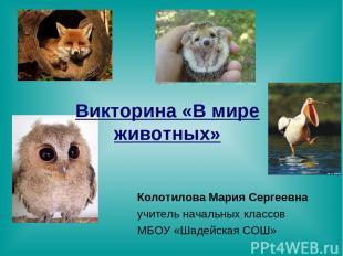 Викторина «В мире животных» Колотилова Мария Сергеевна учитель начальных классов