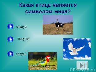 Какая птица является символом мира? страус попугай голубь