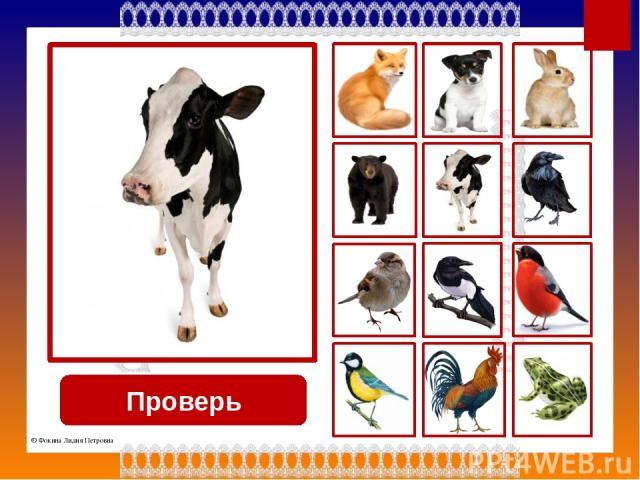 Проверь ворона © Фокина Лидия Петровна