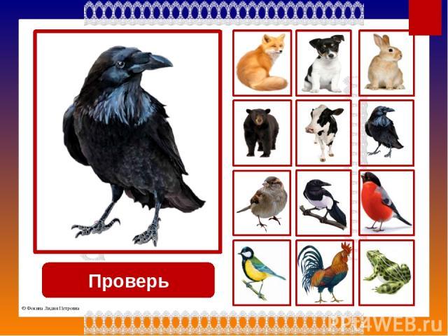 Используемые источники Кружево http://img-fotki.yandex.ru/get/5633/39663434.369/0_8781d_ea3e27ef_L.png Лисица http://static.playcast.ru/uploads/2013/11/29/6700223.png Собака http://img-fotki.yandex.ru/get/5814/113882196.d2/0_63c75_8927fd41_XL Заяц h…