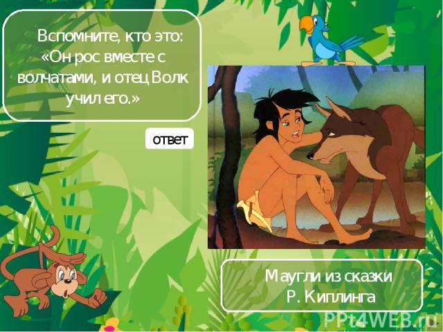 Вспомните, кто это: «Он рос вместе с волчатами, и отец Волк учил его.» Маугли из сказки Р. Киплинга ответ