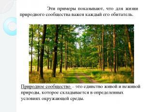 Эти примеры показывают, что для жизни природного сообщества важен каждый его оби