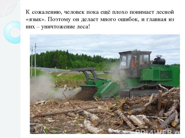 К сожалению, человек пока ещё плохо понимает лесной «язык». Поэтому он делает много ошибок, и главная из них – уничтожение леса!