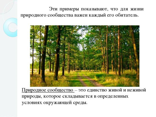 Эти примеры показывают, что для жизни природного сообщества важен каждый его обитатель. Природное сообщество – это единство живой и неживой природы, которое складывается в определенных условиях окружающей среды.