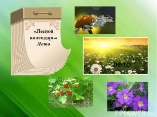 «Лесной календарь» Лето июнь июль август лето