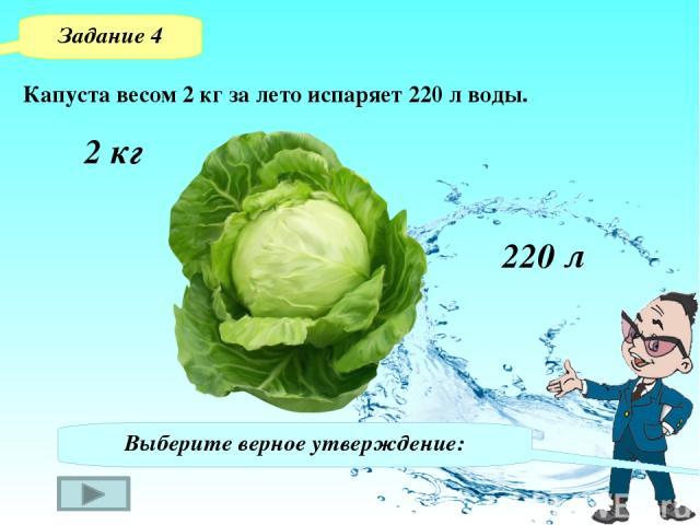 Задание 4 Выберите верное утверждение: А Б В Г Одно растение капусты за лето испаряет 220 л.воды. Одно растение капусты в месяц В среднем испаряет 18 л воды. Одно растение капусты за лето пропускает 110000 л воды. Одно растение капусты за лето усваи…