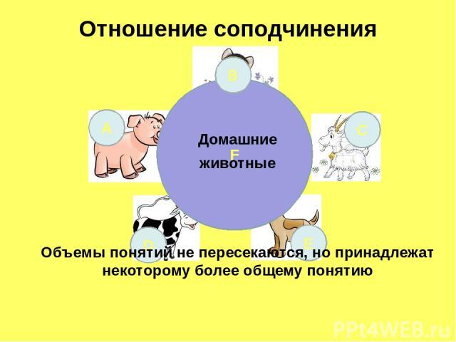 Отношение соподчинения F А С D E Домашние животные В Объемы понятий не пересекаются, но принадлежат некоторому более общему понятию