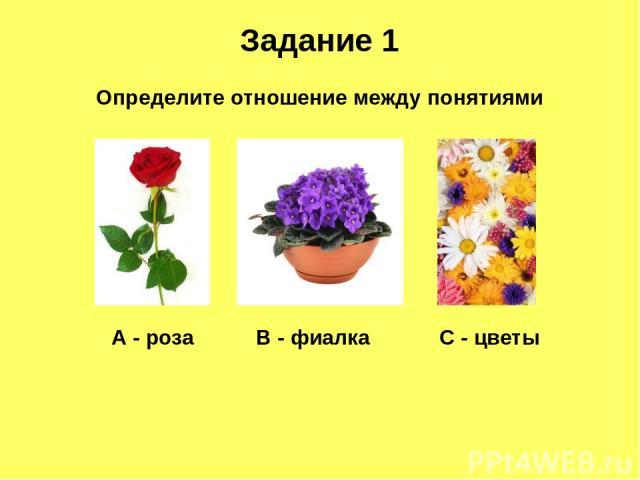 Задание 1 Определите отношение между понятиями А - роза В - фиалка С - цветы