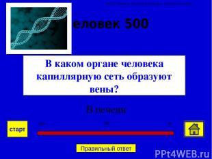 Спасибо за игру! Автор Семенова Наталия Викторовна. Учитель биологии