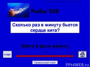 Источники и использованные ресурсы Вопросы - http://biouroki.ru/material/voprosi