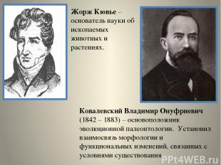 Жорж Кювье – основатель науки об ископаемых животных и растениях. Ковалевский Вл