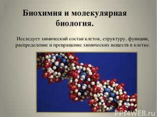 Биохимия и молекулярная биология. Исследует химический состав клеток, структуру,