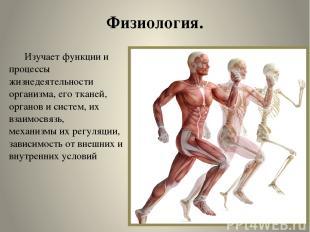 Физиология. Изучает функции и процессы жизнедеятельности организма, его тканей,
