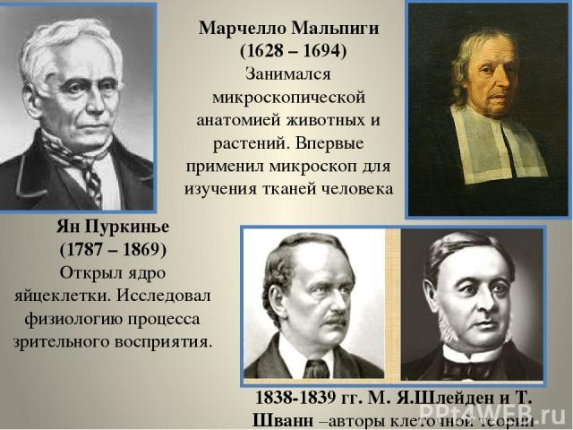 Ян Пуркинье (1787 – 1869) Открыл ядро яйцеклетки. Исследовал физиологию процесса зрительного восприятия. Марчелло Мальпиги (1628 – 1694) Занимался микроскопической анатомией животных и растений. Впервые применил микроскоп для изучения тканей человек…