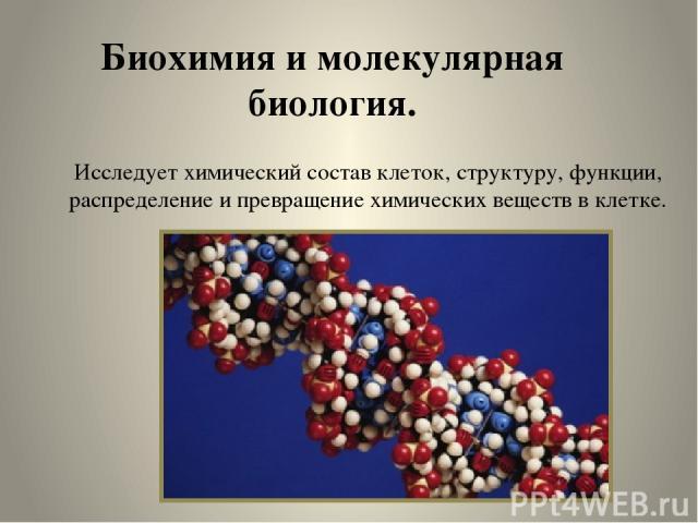 Биохимия и молекулярная биология. Исследует химический состав клеток, структуру, функции, распределение и превращение химических веществ в клетке.