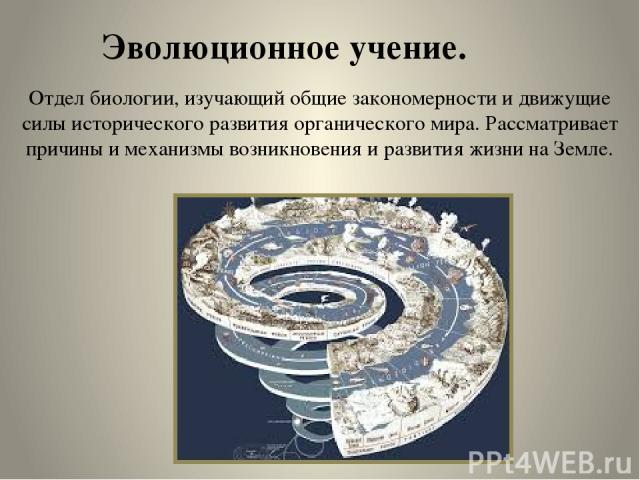 Эволюционное учение. Отдел биологии, изучающий общие закономерности и движущие силы исторического развития органического мира. Рассматривает причины и механизмы возникновения и развития жизни на Земле.