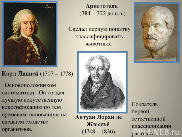 Карл Линней (1707 – 1778) Основоположником систематики. Он создал лучшую искусственную классификацию по тем временам, основанную на внешнем сходстве организмов. Аристотель (384 – 322 до н.э.) Сделал первую попытку классифицировать животных. Антуан Л…