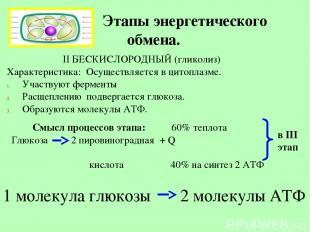Этапы энергетического обмена. II БЕСКИСЛОРОДНЫЙ (гликолиз) Характеристика: Осуще