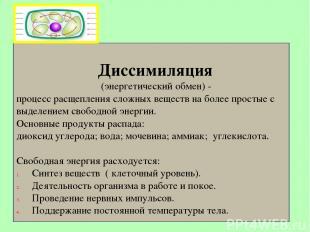 Диссимиляция (энергетический обмен) - процесс расщепления сложных веществ на бол