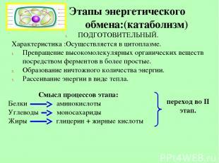 Этапы энергетического обмена:(катаболизм) ПОДГОТОВИТЕЛЬНЫЙ. Характеристика :Осущ