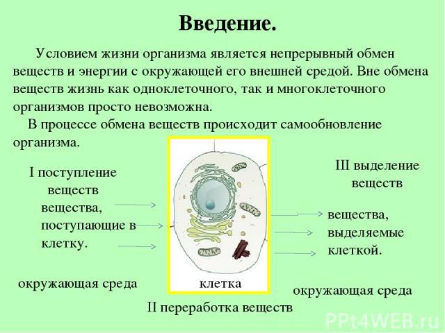 Условием жизни организма является непрерывный обмен веществ и энергии с окружающей его внешней средой. Вне обмена веществ жизнь как одноклеточного, так и многоклеточного организмов просто невозможна. В процессе обмена веществ происходит самообновлен…