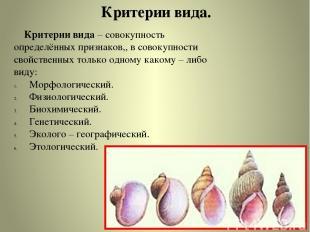 Критерии вида. Критерии вида – совокупность определённых признаков,, в совокупно