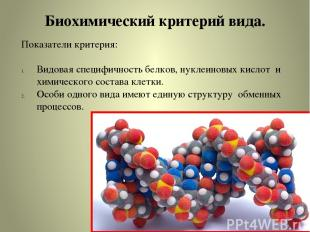 Биохимический критерий вида. Показатели критерия: Видовая специфичность белков,