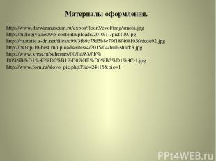 http://www.darwinmuseum.ru/expos/floor3/evol/img/smola.jpg http://biologiya.net/