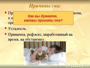 Причины сна: Природный ритм Земли - смена дня и ночи, к которому приспособлены в