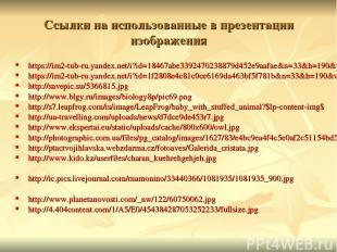 Ссылки на использованные в презентации изображения https://im2-tub-ru.yandex.net