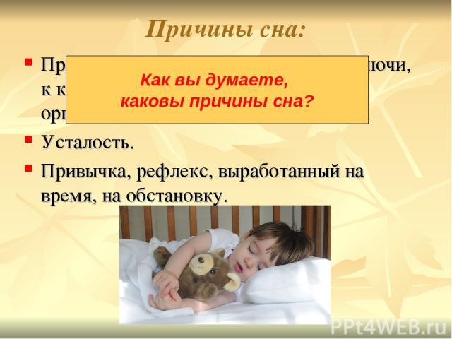 Причины сна: Природный ритм Земли - смена дня и ночи, к которому приспособлены все живые организмы. Усталость. Привычка, рефлекс, выработанный на время, на обстановку. Как вы думаете, каковы причины сна?