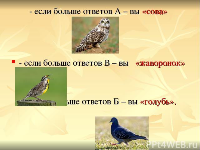 - если больше ответов А – вы «сова» - если больше ответов В – вы «жаворонок» - если больше ответов Б – вы «голубь».