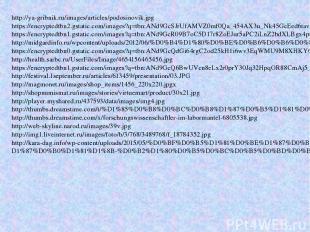 http://ya-gribnik.ru/images/articles/podosinovik.jpg https://encryptedtbn2.gstat