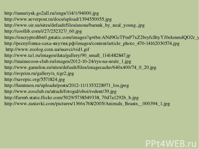 http://ussuriysk.go2all.ru/imgs/114/1/94000.jpg http://www.severpost.ru/docs/upload/1394550055.jpg http://www.oir.su/sites/default/files/anons/barsuk_by_neal_young..jpg http://coollib.com/i/27/252327/_60.jpg https://encryptedtbn0.gstatic.com/images?…